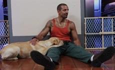 prison-dogs_thumb.jpg