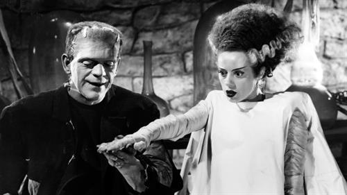 The_Bride_of_Frankenstein_TMDB-haPU3dCyYUTRN34ceyJrX4DAjZq.jpg