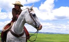 Cowgirls-main_thumb.jpg