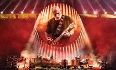 David-Gilmour-main_thumb.jpg