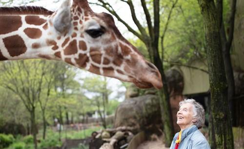 Woman-Giraffes-1_thumb.jpg